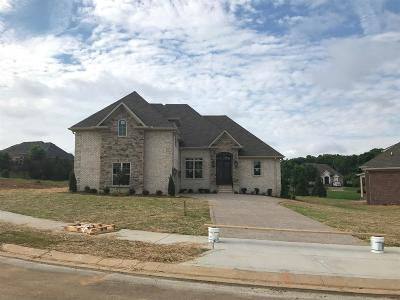 Sumner County Single Family Home For Sale: 116 Worcester's Point