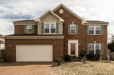 Davidson County Single Family Home For Sale: 8020 Boone Trace