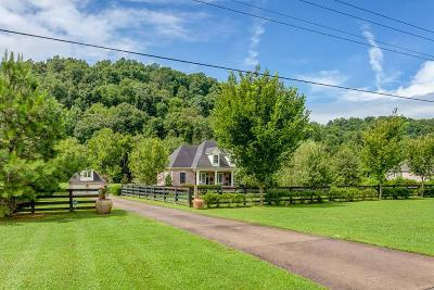 Franklin  Single Family Home For Sale: 4113 New Highway 96 W