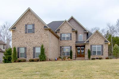 Smyrna Single Family Home For Sale: 114 Holywell Ct