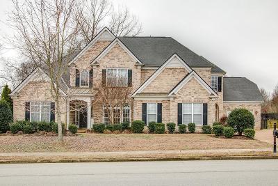 Hendersonville Single Family Home For Sale: 106 Oglethorpe Ave