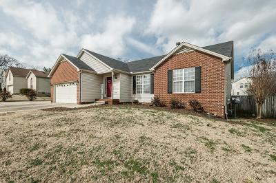 Sumner County Single Family Home For Sale: 129 Raindrop Lane