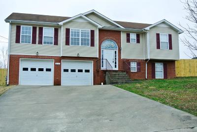 Clarksville TN Single Family Home For Sale: $182,500
