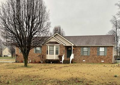 Smyrna Single Family Home For Sale: 918 Mason Tucker Dr