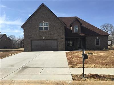 Pleasant View Single Family Home For Sale: 44 Bradley Bend Lot 44