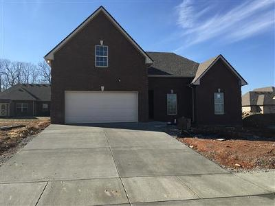 Cheatham County Single Family Home For Sale: 45 Bradley Bend Lot 45