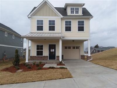 Williamson County Single Family Home For Sale: 3049 Blueberry Lane- Lot 299