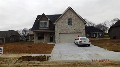 Pleasant View Single Family Home For Sale: 43 Bradley Bend Lot 43