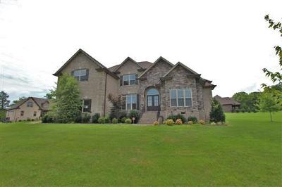 Mount Juliet Single Family Home Active - Showing: 800 Guinevere Pt