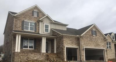 Mount Juliet Single Family Home For Sale: 3074 Oxford Drive #423