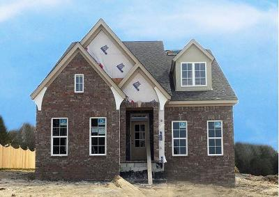Mount Juliet TN Single Family Home For Sale: $423,285