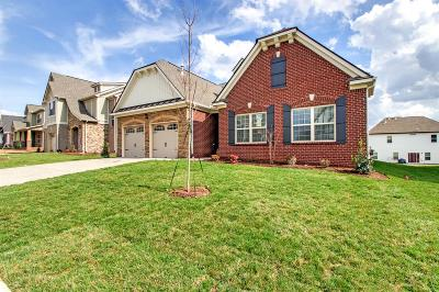 Stonebridge, Stonebridge Ph 1, 2, 3, Stonebridge Ph 11, Stonebridge Ph 17 Single Family Home For Sale: 1108 Mary's Place (625)