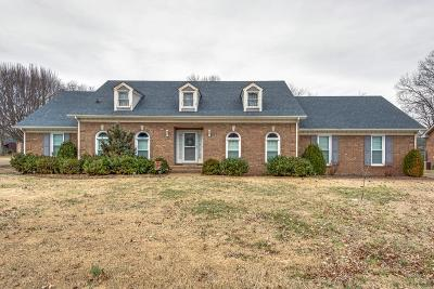 Hendersonville Single Family Home For Sale: 231 Connie Dr