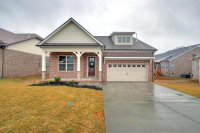 Mount Juliet TN Single Family Home For Sale: $409,900