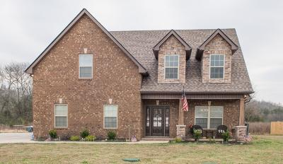 Rutherford County Single Family Home For Sale: 2126 Grandstand Dr
