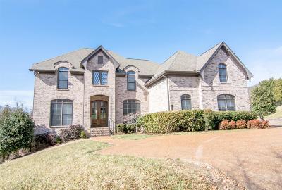 Franklin Single Family Home For Sale: 253 King Arthur Cir
