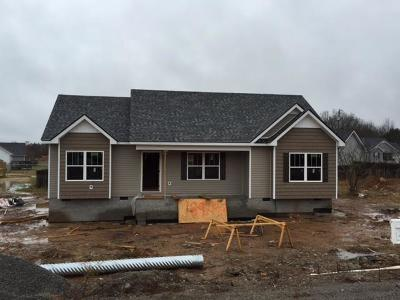 Lewisburg Single Family Home For Sale: 189 Trey Dr