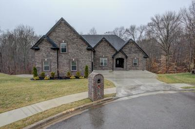 Clarksville Single Family Home For Sale: 2557 Everwood Ct