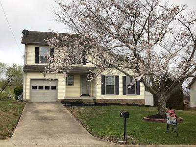 Clarksville Single Family Home For Sale: 2164 Bauling Ln