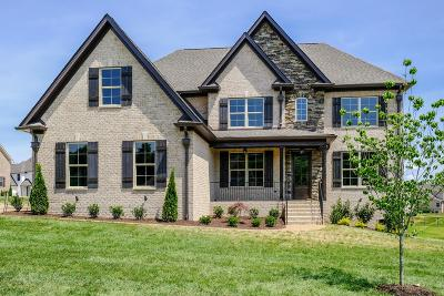 Spring Hill Single Family Home For Sale: 1014 Gadwall Lane(Lot 307)