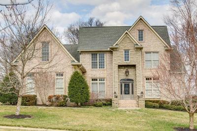 Hendersonville Single Family Home For Sale: 100 Gaston St