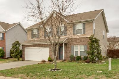Spring Hill Single Family Home For Sale: 1038 Countess Ln