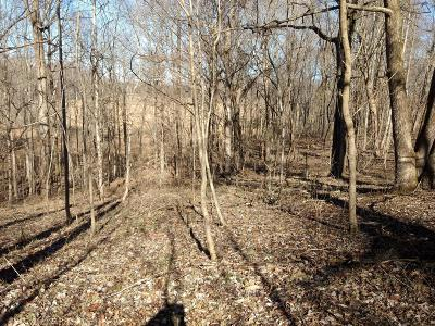 Residential Lots & Land Sold: 553 Hog Back Ridge Rd
