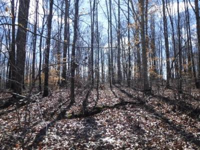 Dekalb County Residential Lots & Land For Sale: 17 Pin Hook Rd