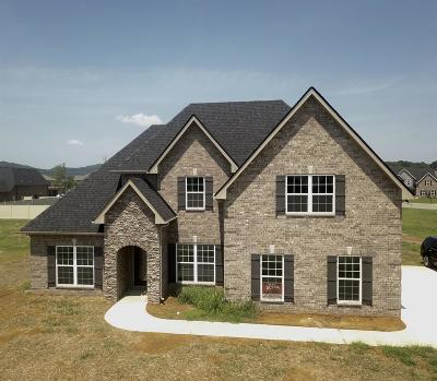 Lascassas Single Family Home For Sale: 1117 Bandini Court