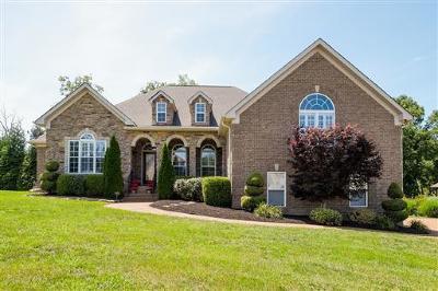 Mount Juliet Single Family Home For Sale: 822 Harrisburg Ln