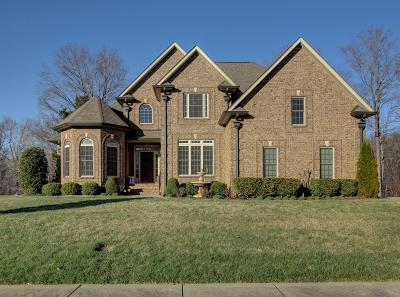 Clarksville Single Family Home For Sale: 2541 Everwood Ct