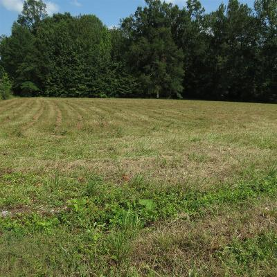 Dekalb County Residential Lots & Land For Sale: 4739 Blue Springs Road