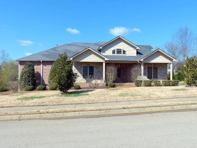 Hendersonville Single Family Home For Sale: 1007 Del Ray Trl