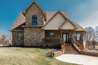 Hendersonville Single Family Home For Sale: 120 Riverwood Dr