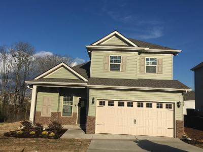 Spring Hill Single Family Home For Sale: 6027 Sentinel Drive Prim 56