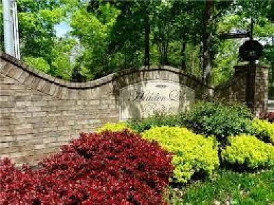 Ashland City Single Family Home For Sale: 2150 Pebblebrook Dr