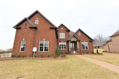Mount Juliet Single Family Home For Sale: 10 Collette Ct. #112