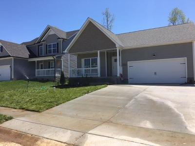 Single Family Home For Sale: 131 Magnolia Place
