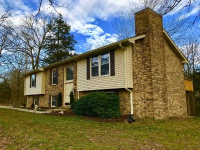 Kingston Springs Single Family Home For Sale: 254 Woodlands Dr