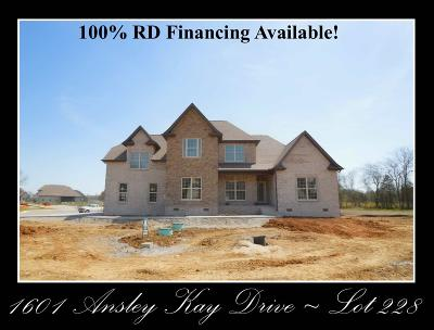 Single Family Home For Sale: 1601 Ansley Kay Drive - Lot 228