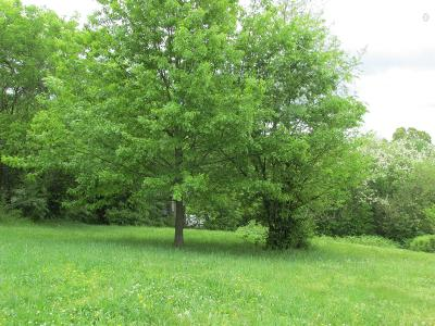 Clarksville Residential Lots & Land For Sale: 1 S 1st St (Tract 1)