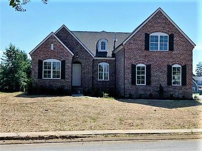 Murfreesboro Single Family Home For Sale: 3332 Vintage Grove Pkwy
