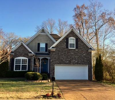 Spring Hill Single Family Home For Sale: 1072 Solomon Ln
