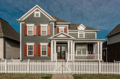Hendersonville Single Family Home For Sale: 1528 Drakes Creek Rd