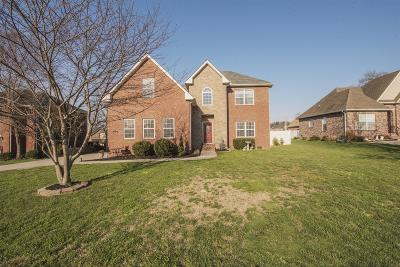 Smyrna Single Family Home For Sale: 1306 Bantry Dr