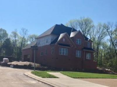 Hendersonville Single Family Home For Sale: 203 S Malayna Lot 132