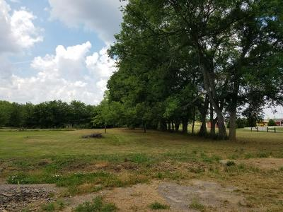 Murfreesboro Residential Lots & Land For Sale: 720 Spike Trl