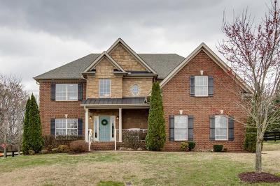 Hendersonville Single Family Home For Sale: 1001 Avery Trace Circle