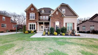 Spring Hill Single Family Home For Sale: 4019 Campania Strada