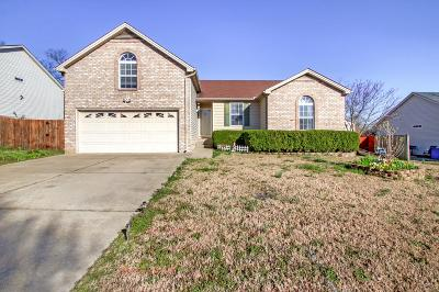 Hendersonville Single Family Home Under Contract - Showing: 127 Raindrop Ln